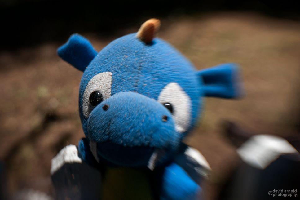 Blue Sock Monkey Dog Toy
