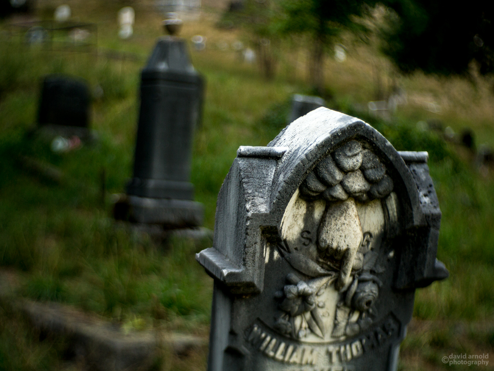 Grave of William Meyer, Downieville Cemetery, Downieville, California