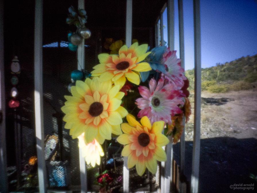 Plastic Flowers, Shrine Near Ligui, Highway 1, Baja California Sur, Mexico