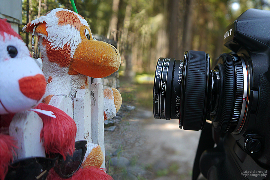 Toys with camera set-up