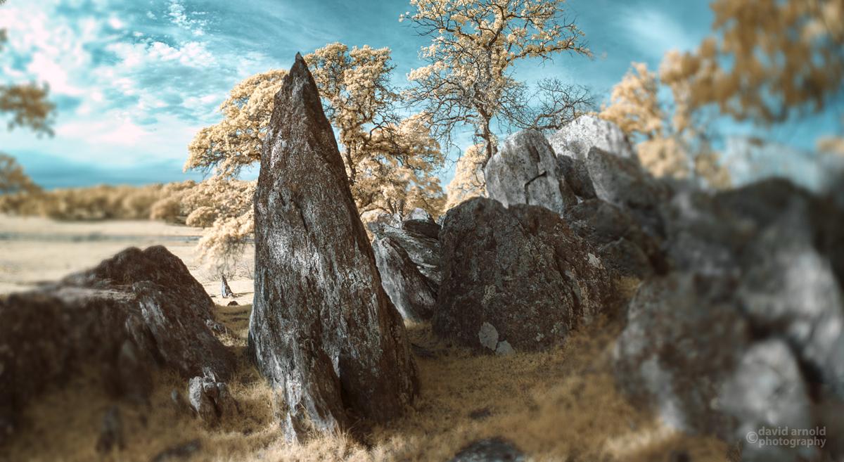 Large Sharp Schist, Tombstone Rocks, Spenceville Wildlife Area