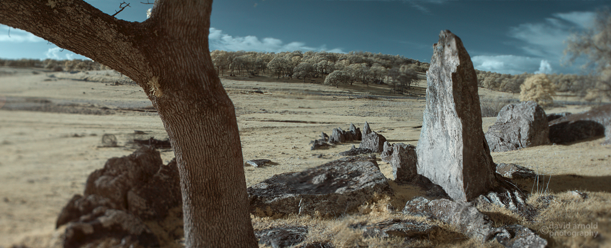Standing Stone and Tree, Tombstone Rocks, Spenceville Wildlife Area