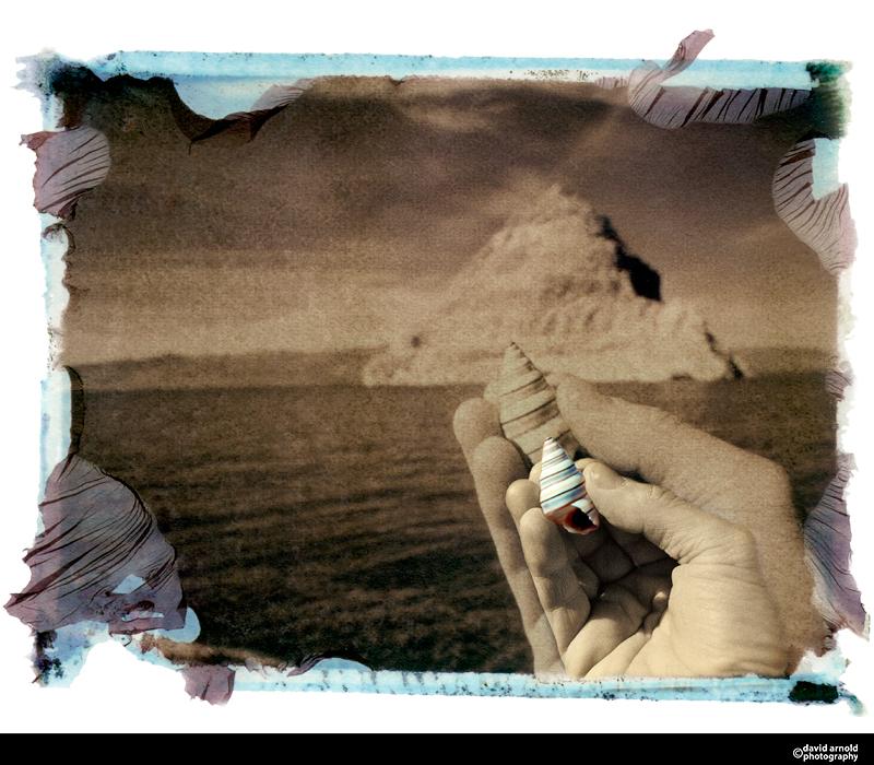 Shell, Pyramid Lake, Nevada
