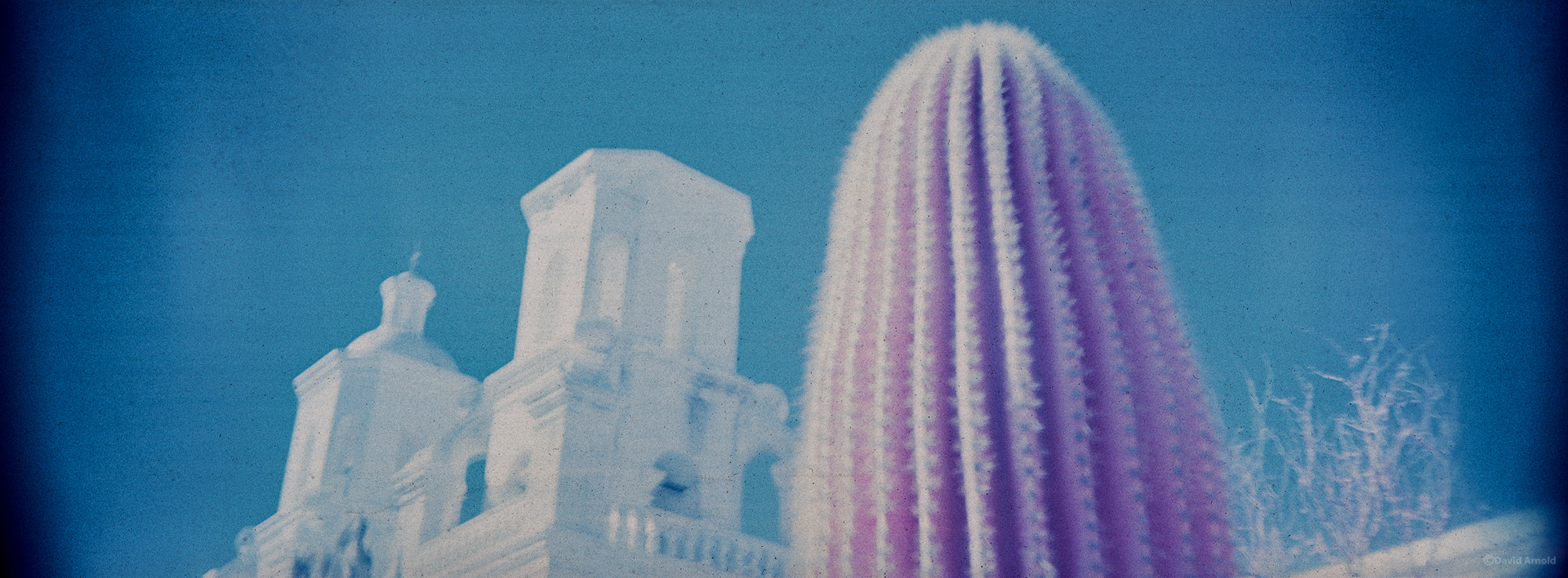 Two Towers and Saguaro Cactus, Mission San Xavier del Bac.