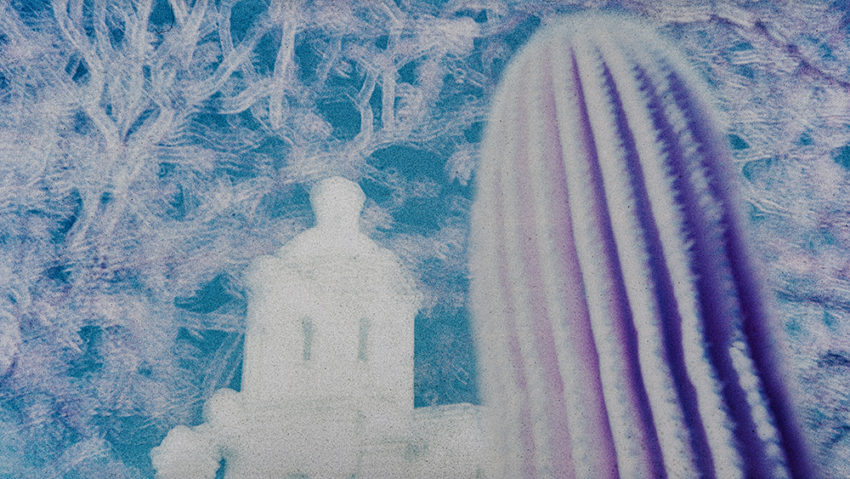 Mission San Xavier del Bac, cactus-branches-dome