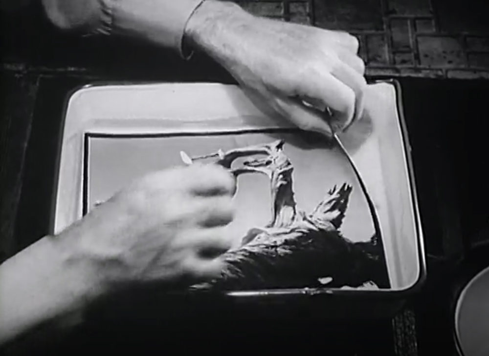 Edward Weston removing a black and white print from the washing tray.