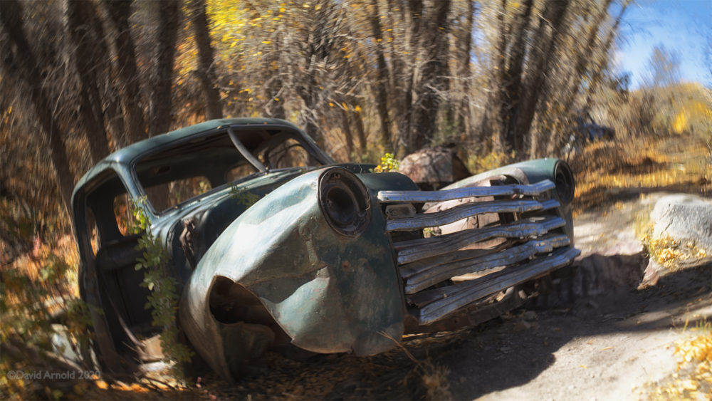 Abandoned car along a creek bed with trees.