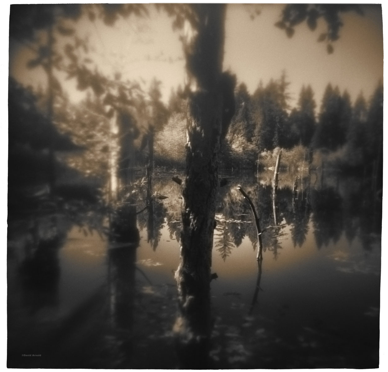 Diggings Pond, Dutch Flat, Placer County, California