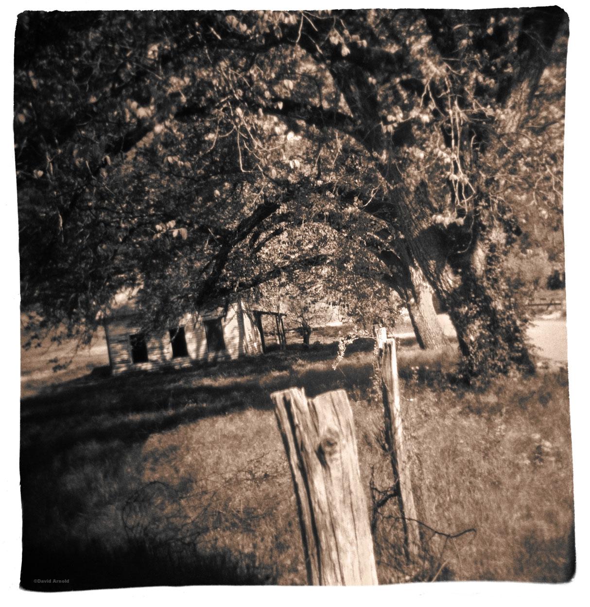 Fence Post, Tree, House, Helena, Trinity County, California