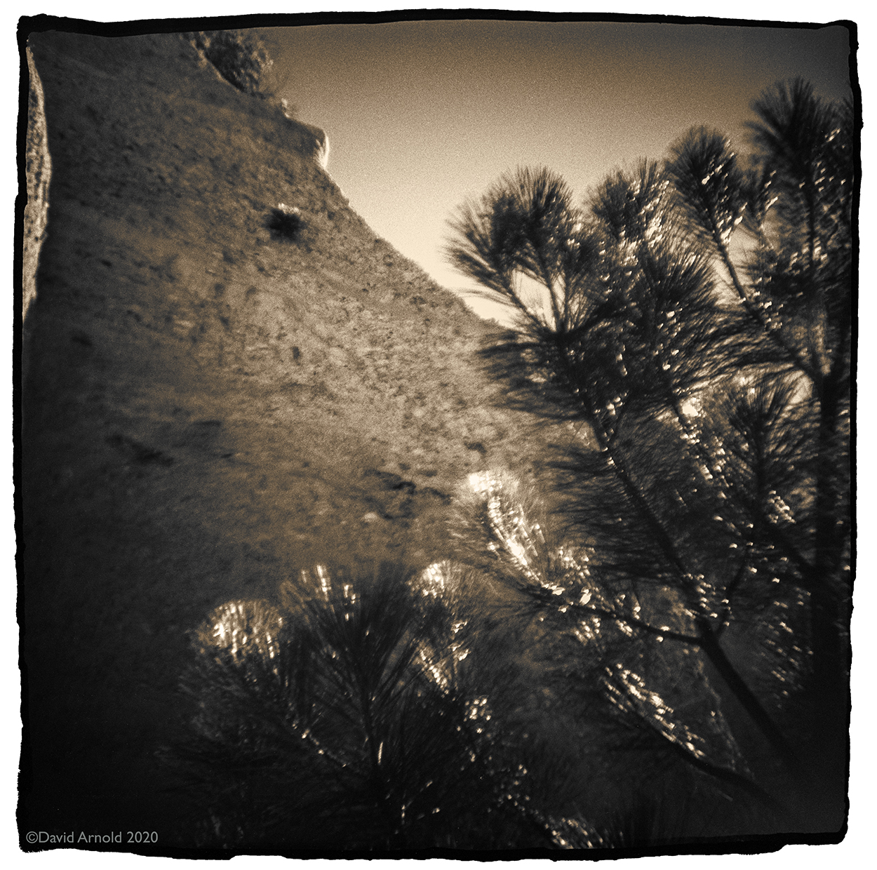 Eroded Bluff, Pine Tree, Malakoff Diggins, Nevada County, California.