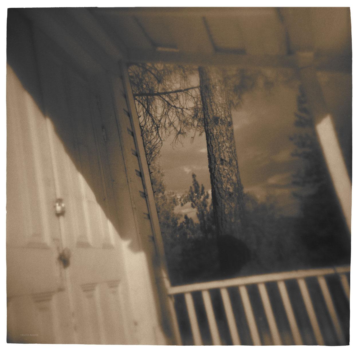 Pine Tree, Door, Lewiston, Trinity County, California.